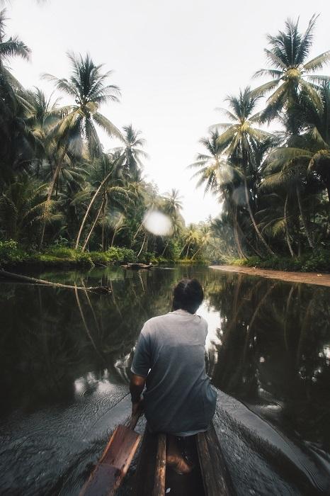 Путешествие в глубь тропических лесов.