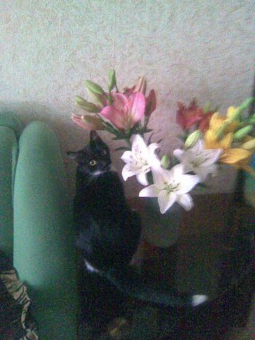 я люблю позировать с цветами