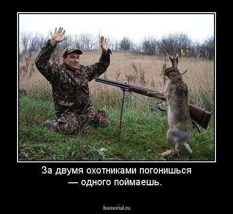 Анекдот Про Волка Лося И Охотников
