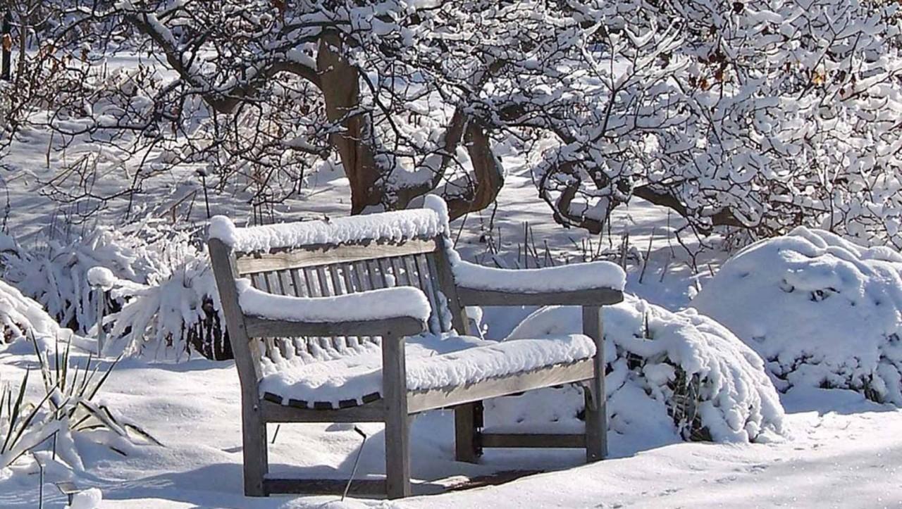Январские заботы дачника. Итак, чем можно заняться в январе? Подробнее смотрите видео здесь