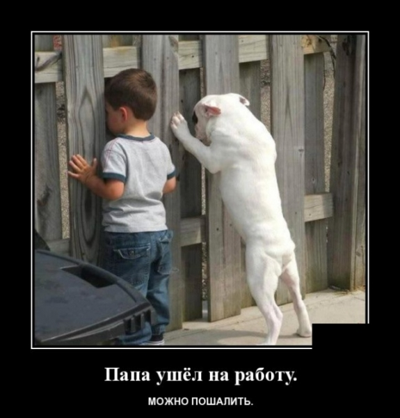Эти фото поднимут настроение)