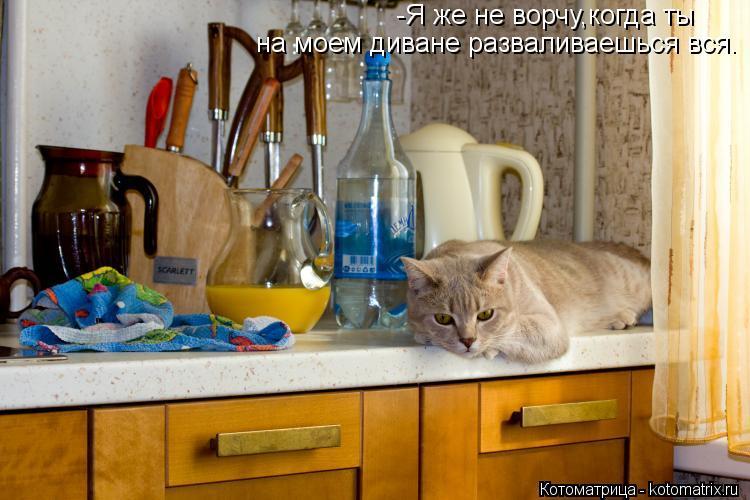 Котоматрица: -Я же не ворчу,когда ты на моем диване разваливаешься вся.