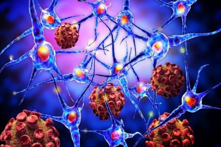 Способы воздействия на раковую клетку...