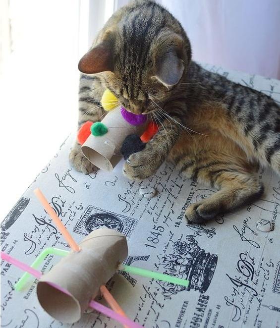 Как сделать игрушку для котенка быстро