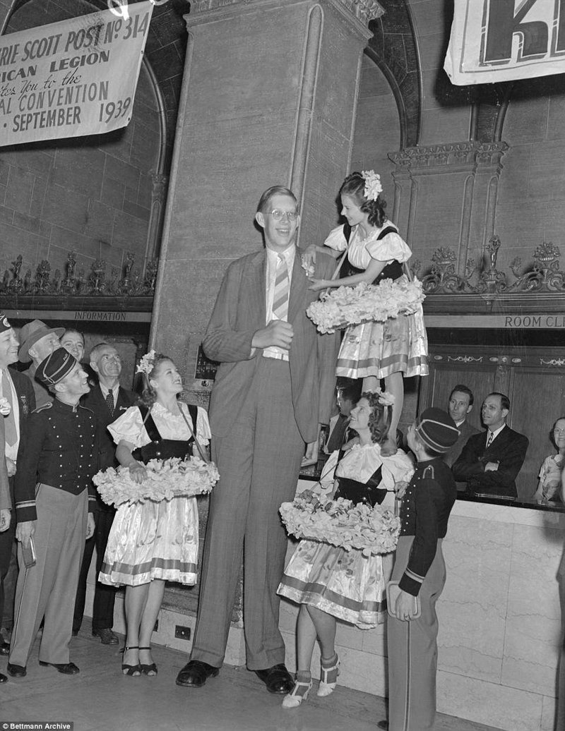 Девушки проявляют спортивную подготовку и смекалку, чтобы прикрепить цветок на лацкан пиджака Роберта акромегалия, великан, опухоль, рекорд, рекорд гиннесса, рекордсмен Гинесса, самый высокий, самый высокий человек