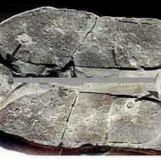 Артефакты, меняющие историю человечества.