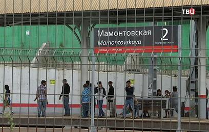 На железнодорожной станции в Подмосковье поселился цыганский табор