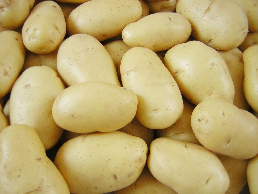 Лучшие сорта картофеля для ценителей вкуса и любителей урожая