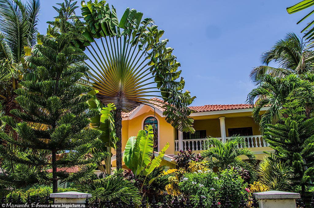 stock 71 75 фактов про Доминиканскую Республику