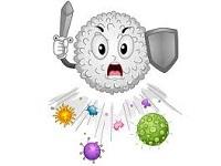 Простые, до удивления, способы поднять иммунитет