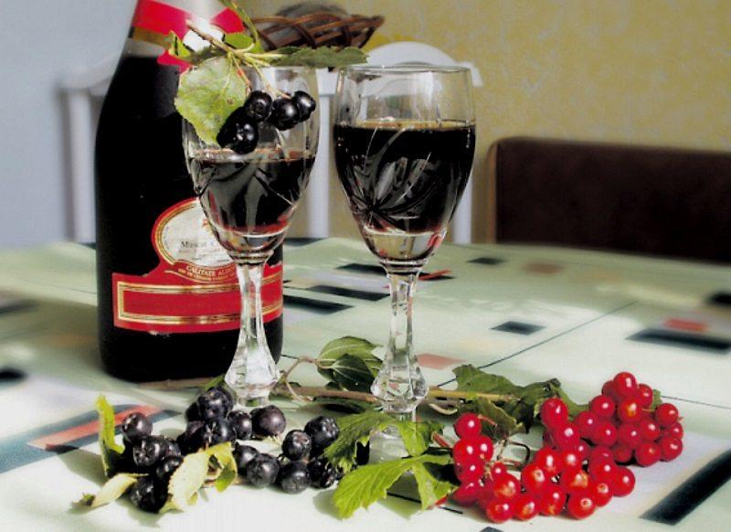 Черная рябина — полезные свойства ягоды, уникальный витаминный состав и лечение