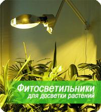Фитосветильники для досветки растений.