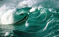 Моря и океаны 59