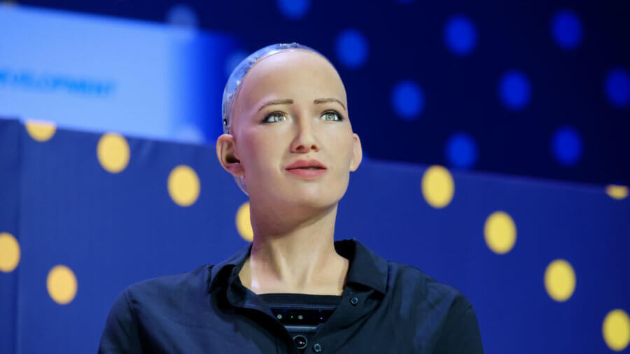 What Roboticists Are Learning From Early Generations of Lifelike Humanoid Robots