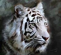 Белые тигры 37