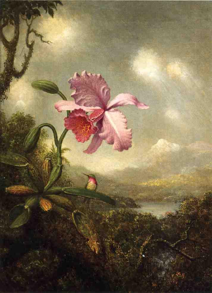 Картины Martin Jonson Heade