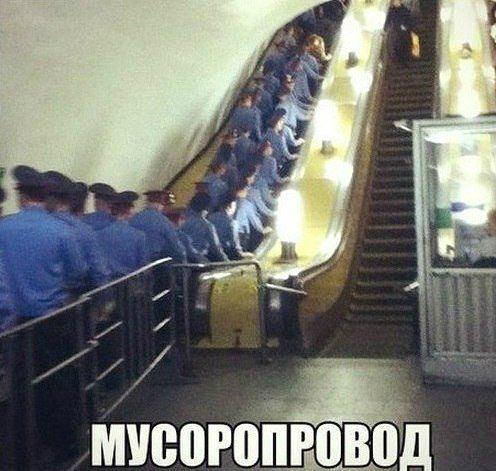 ПРИКОЛЬНЫЕ КАРТИНКИ С НАДПИСЯМИ. ЭДВАЙСЫ-51.