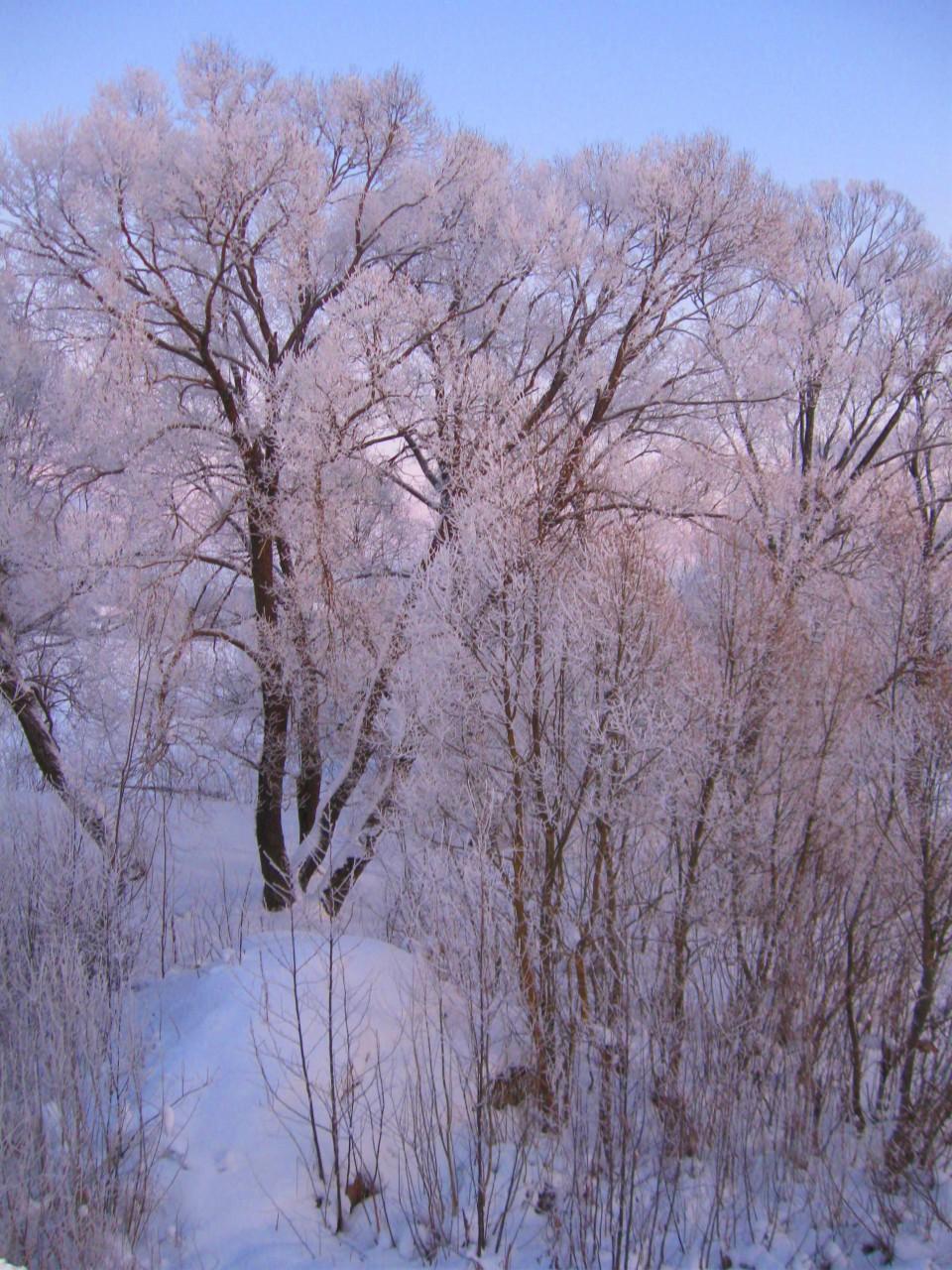 Зима - сказочное время.
