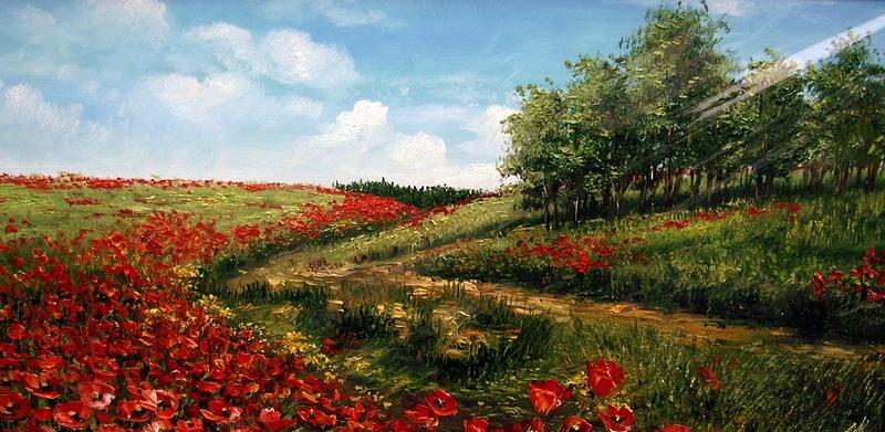 Есть особая прелесть в цветах полевых