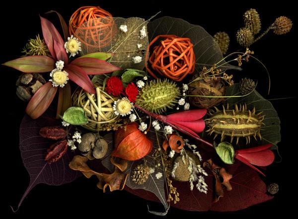 Поделки из природных материалов: листья и цветы