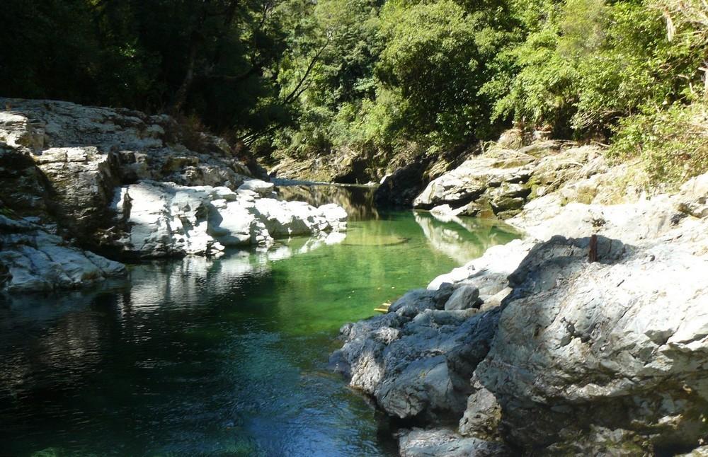 В Новой Зеландии продается участок золотоносной реки всего за $75 000