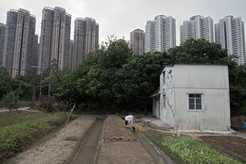 Гонконг контраст, необычные кадры, столкновение эпох, удачные снимки, фото, хорошие кадры