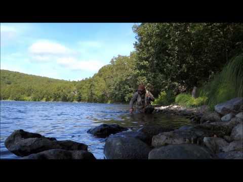 Несколько минут ловли гольца на Камчатке