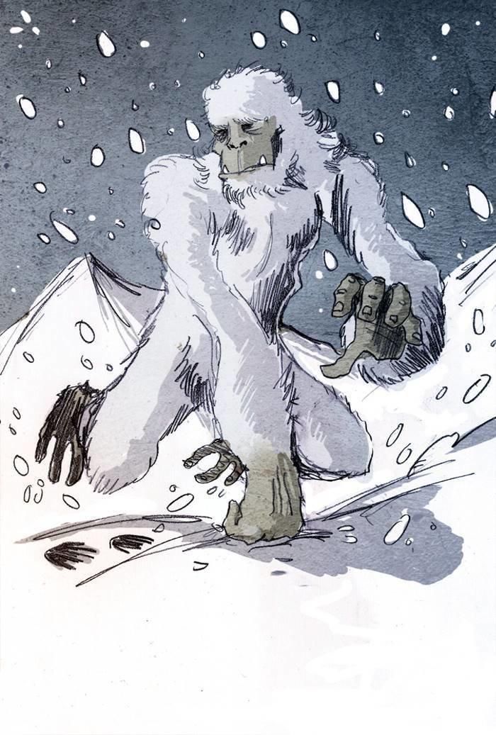 """Чтобы попытаться разрешить загадку, Даниэль Тейлор, автор книги """"Yeti: The Ecology of Mystery"""", отважился отправиться в Барун, долину у подножия горы Макалу в Непале анализ, днк, йети, медведь, наука, новости, тайна, ученные"""