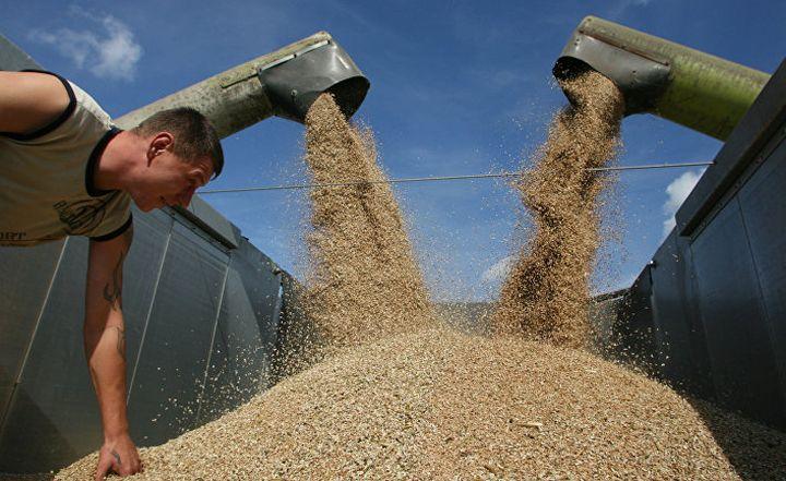 Как страна-зерноколонка гнобит весь мир
