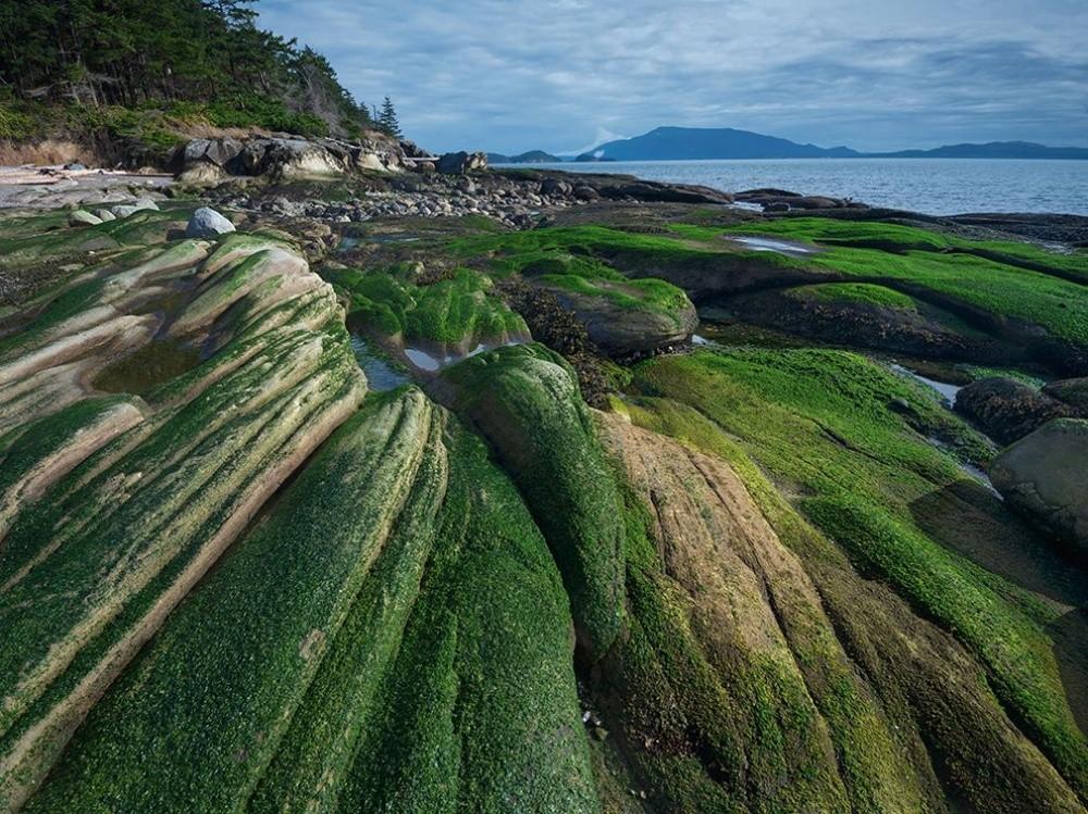 natgeo19 Topo Fotografias National Geographic setembro