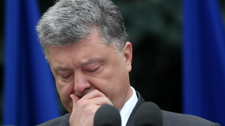 Единственная надежда Украины…