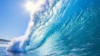 Моря и океаны 75