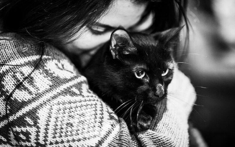 Одинокая женщина и кошачьи нежности