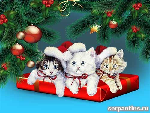 Животные и Новый Год (позитив)