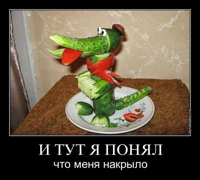 http://mtdata.ru/u28/photoDC3C/20243503423-0/original.jpg