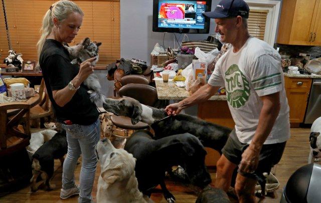 Пара взяла 46 животных в свой дом во время урагана!