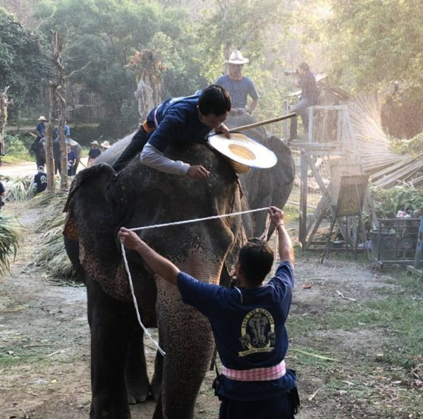 В Чианг Мае стартует школа Mahout