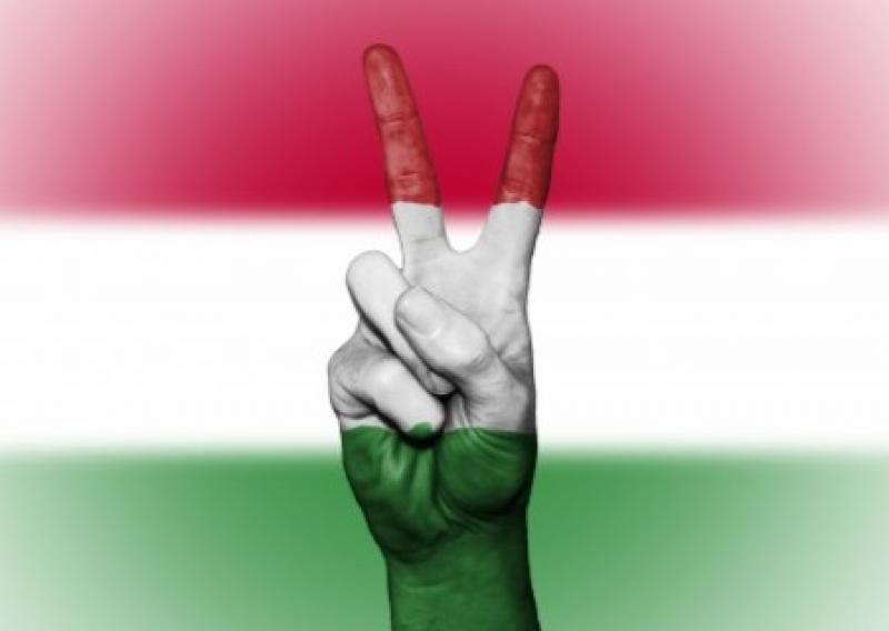 Венгрия забросала Закарпатье листовками с призывом бороться против ущемления нацменьшинств