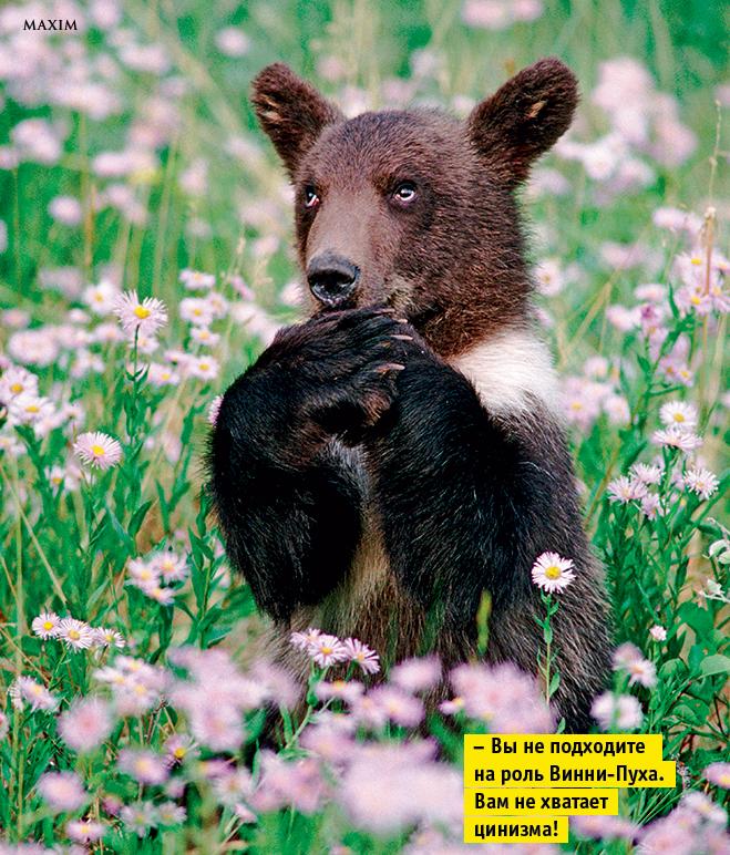 10 фотографий, на которых животные строят рожи