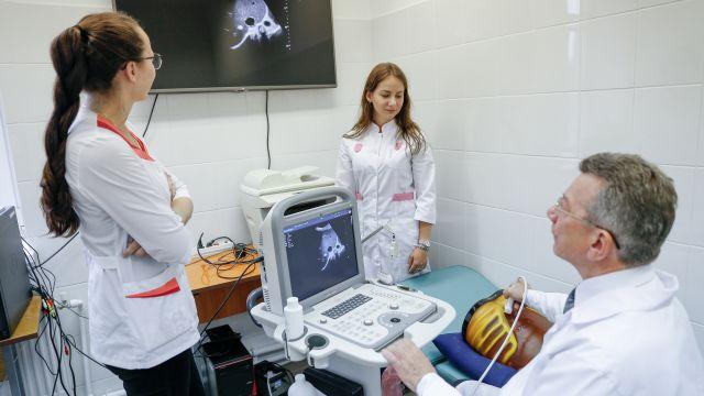 Скворцова рассказала, сколько получают врачи в России