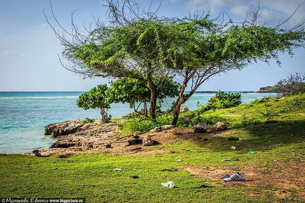facts 13 75 фактов про Доминиканскую Республику