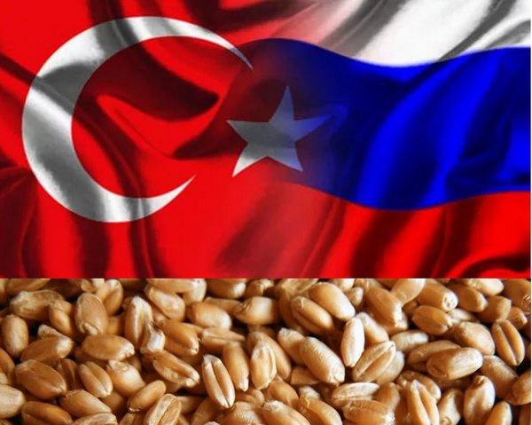 Подзатыльник доллару: Турция впервые купит у РФ пшеницу за рубли