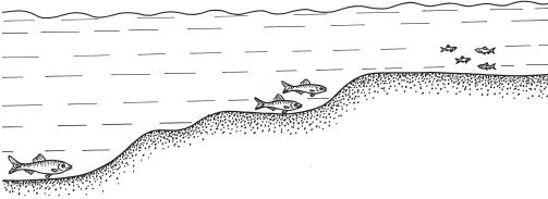 как определить место для ловли судака