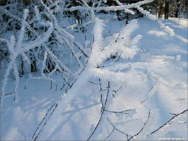 Зима рисует узоры