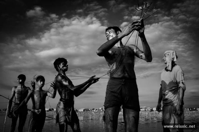 Лучшие фото Смитсоновского конкурса-2013 (25 фото)