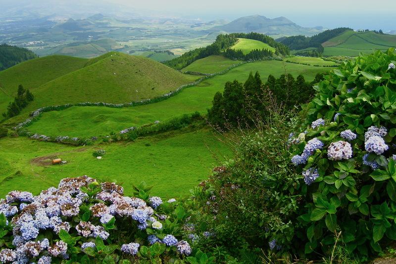 Зеленый остров Сан-Мигель, Азорские острова