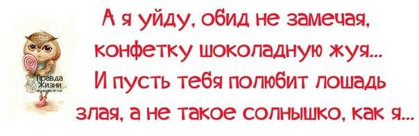1385950580_frazochk-i-30 (604x196, 82Kb)