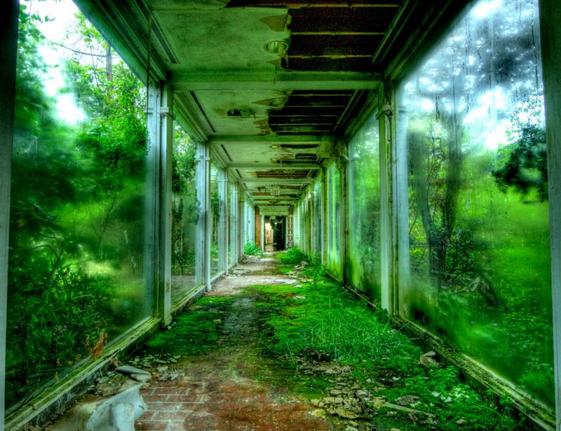 Аквариум, Кливленд заброшенное, красиво, мир без людей, природа берет свое, фото, цивилизация