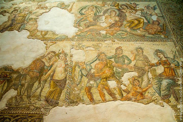 cyprus 36 Мозаики Пафоса   Пафос, Кипр