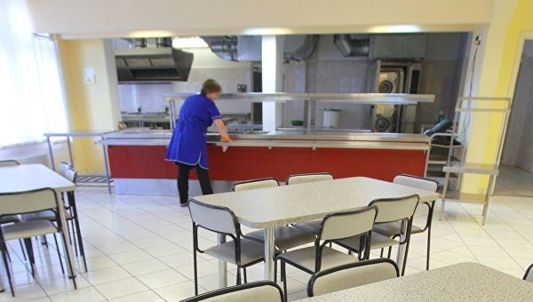Во Владимирской области хотят отменить бесплатное питание в школах, чтобы не кормить «сытых мальчиков»